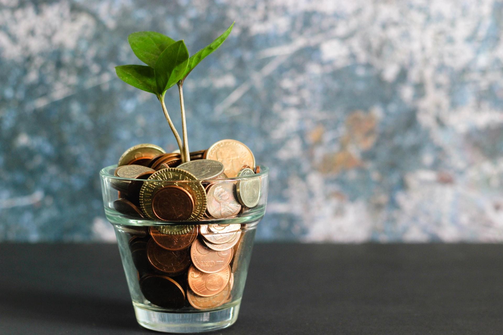 3 gode råd til hvordan du nemt kan spare penge i hverdagen