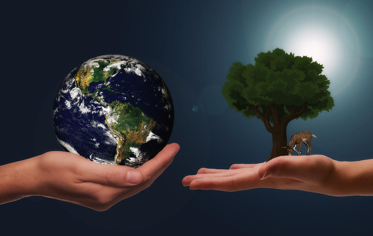 Bli mer miljøvennlig - kjøp brukt på auksjon